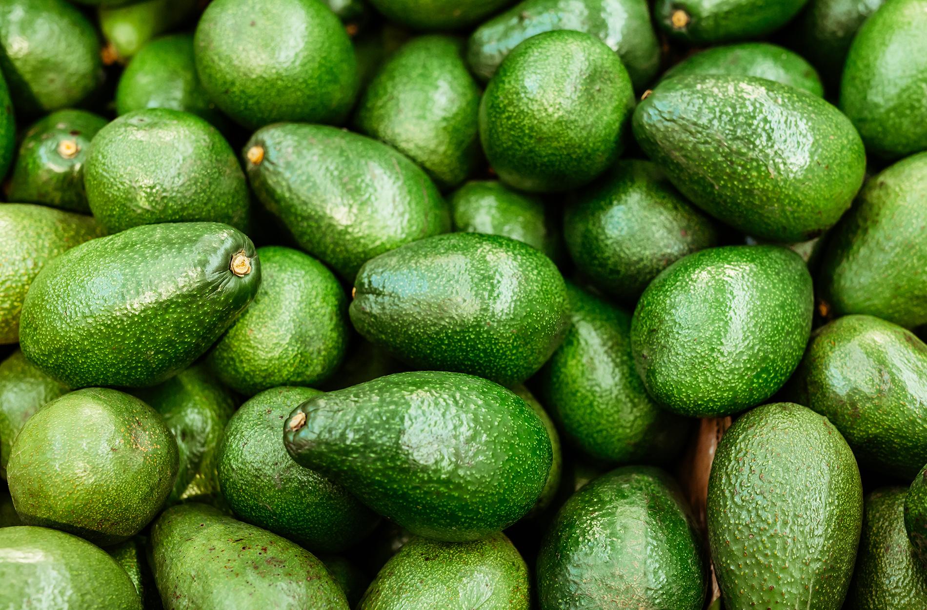 Close up of dozens of avocados