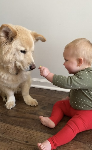 baby and dog looking at each other